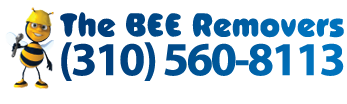Bee Removal Los Angeles
